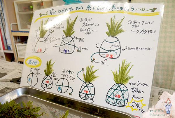 โคเกะดะมะ