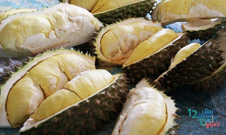 """กินผลไม้ฟรี งาน """"ของดีเมืองจันท์ วันผลไม้"""" 19-27 พ.ค. นี้ ที่จันทบุรี"""