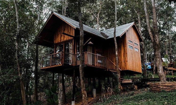 เที่ยวน่าน ชมบ่อเกลือ นอนบ้านต้นไม้ ณ ไร่ต้นรัก