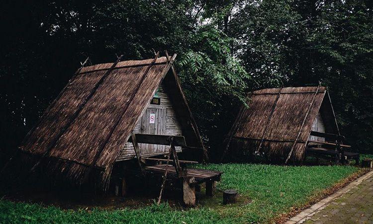 พักบ้านเกวียน นอนชมธรรมชาติ ในอุทยานแห่งชาติดอยภูคา จ.น่าน