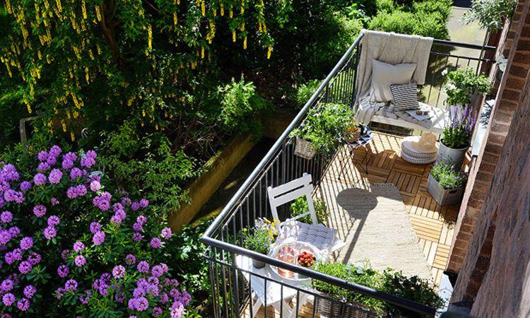 20 ไอเดียการจัดสวนสวยบนระเบียงแคบๆ ใครที่อยู่คอนโด ห้ามพลาด!