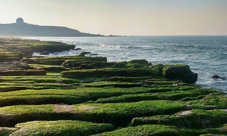 Laomei Green Reef แนวปะการังหินสีเขียวอันน่าอัศจรรย์ที่ไต้หวัน