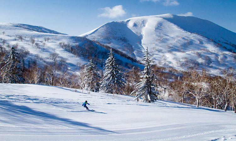 เปิดประสบการณ์สัมผัสหิมะที่ดีที่สุดในญี่ปุ่น ที่ คิโรโระ รีสอร์ท ฮอกไกโด