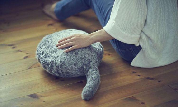 QOOB หุ่นยนต์แมวเหมียว หางกระดิกได้ ตอบสนองคนขี้เหงาที่อยากมีเพื่อนร่วมห้อง