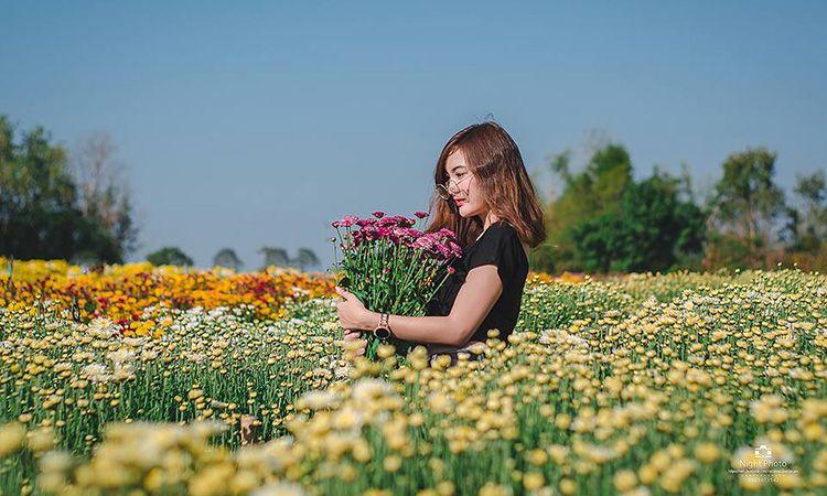 บ้านห้วยสำราญ บ้านห้วยเจริญ แหล่งปลูกไม้ดอกไม้ประดับที่ใหญ่ที่สุดในภาคตะวันออกเฉียงเหนือ