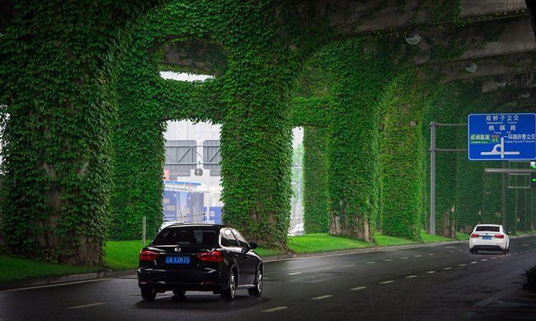 ทางด่วนสีเขียว ในเมืองเฉิงตู ประเทศจีน สวยงามและช่วยลดมลพิษ!
