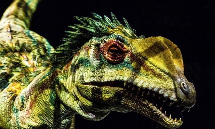 เปิด 5 ตัวเลข ที่ยืนยันว่า WALKING WITH DINOSAURS สุดยอดโชว์ไดโนเสาร์อันดับ 1 ของโลก