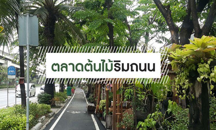 ชวนช็อป 5 ตลาดต้นไม้ริมถนน