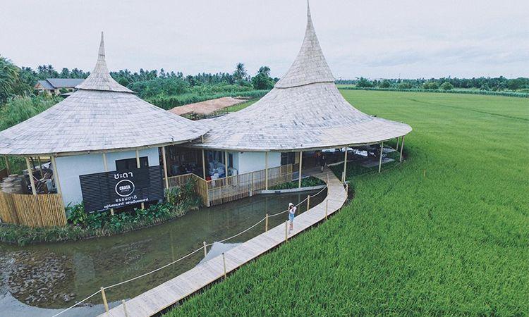 เช็คอินลงโซเชียลก่อนใคร ที่ Chata Thammachart คาเฟ่เปิดใหม่ นครปฐม